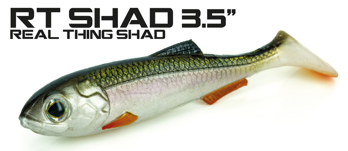 Molix Real Thing Shad 3.5 inch Lures -